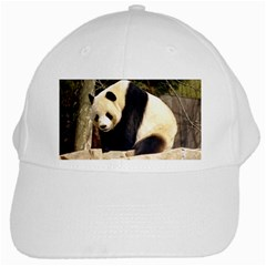 Giant Panda National Zoo White Cap by rainbowberry