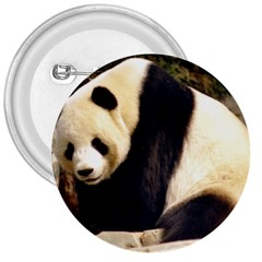 Giant Panda National Zoo 3  Button