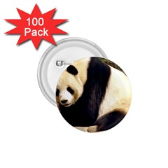 Giant Panda National Zoo 1 75  Button (100 Pack)  by rainbowberry