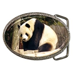 Giant Panda National Zoo Belt Buckle