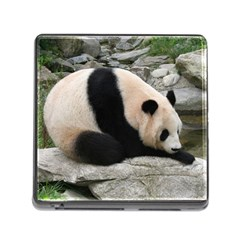 Giant Panda Water Memory Card Reader With Storage (square) by rainbowberry