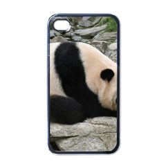 Giant Panda Water Apple Iphone 4 Case (black) by rainbowberry