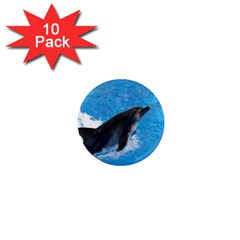 Swimming Dolphin 1  Mini Magnet (10 Pack)  by knknjkknjdd