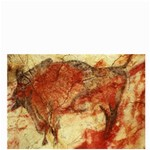 cave painting2 bucket bag