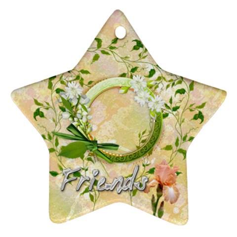 Friends Daisy 2011 Pastel Flower Ornament Star By Ellan   Ornament (star)   Linr7nzilqit   Www Artscow Com Front