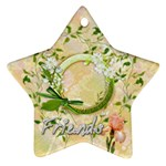 Friends daisy 2011 Pastel Flower ornament star - Ornament (Star)