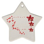 red-white ornament  - Ornament (Star)