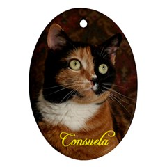 Consuela Ornament Oval Ornament (Two Sides) by psdigitalimagingA