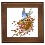 Bluebird and Nest Framed Tile