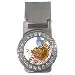 Bluebird and Nest Money Clip (CZ)