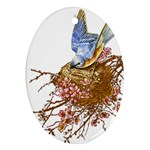 Bluebird and Nest Oval Ornament (Two Sides)