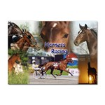 Harness Racing Sticker A4 (10 pack)