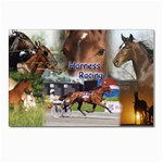 Harness Racing Postcard 4 x 6  (Pkg of 10)