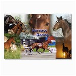 Harness Racing Postcards 5  x 7  (Pkg of 10)