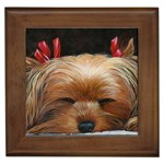 Sleeping Yorkie Painting Scan 300dpi Retouched Copy Framed Tile