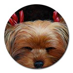 Sleeping Yorkie Painting Scan 300dpi Retouched Copy Round Mousepad