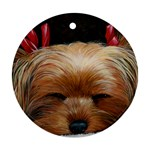 Sleeping Yorkie Painting Scan 300dpi Retouched Copy Ornament (Round)