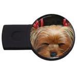 Sleeping Yorkie Painting Scan 300dpi Retouched Copy USB Flash Drive Round (1 GB)