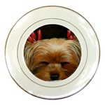 Sleeping Yorkie Painting Scan 300dpi Retouched Copy Porcelain Plate