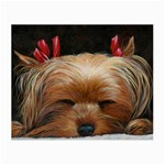 Sleeping Yorkie Painting Scan 300dpi Retouched Copy Glasses Cloth (Small, Two Sides)