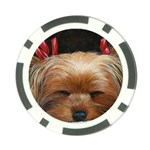 Sleeping Yorkie Painting Scan 300dpi Retouched Copy Poker Chip Card Guard