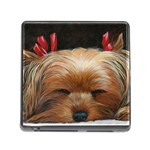 Sleeping Yorkie Painting Scan 300dpi Retouched Copy Memory Card Reader with Storage (Square)