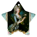 Marie Antoinette Pink Roses And Blue 6 By 8 Copy Ornament (Star)