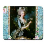 Marie Antoinette Pink Roses And Blue 6 By 8 Copy Large Mousepad