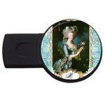 Marie Antoinette Pink Roses And Blue 6 By 8 Copy USB Flash Drive Round (2 GB)