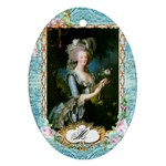 Marie Antoinette Pink Roses And Blue 6 By 8 Copy Oval Ornament (Two Sides)