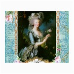 Marie Antoinette Pink Roses And Blue 6 By 8 Copy Glasses Cloth (Small, Two Sides)