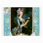 Marie Antoinette Pink Roses And Blue 6 By 8 Copy Glasses Cloth (Large, Two Sides)