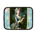 Marie Antoinette Pink Roses And Blue 6 By 8 Copy Netbook Case (Small)