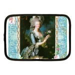 Marie Antoinette Pink Roses And Blue 6 By 8 Copy Netbook Case (Medium)