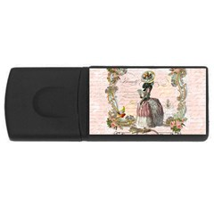 Black Poodle Marie Antoinette W Roses Fini Zazz USB Flash Drive Rectangular (1 GB) from ArtsNow.com Front
