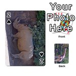 zoo animal playing cards - Playing Cards 54 Designs