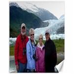 AlaskaCanvas2 - Canvas 12  x 16