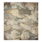 seashells shower curtain - Shower Curtain 66  x 72  (Large)
