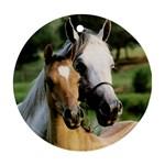 horse1 - Ornament (Round)