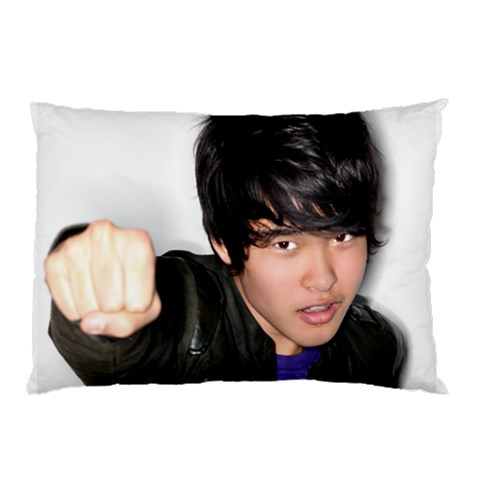 Pillow1 By Jfriersonasst   Pillow Case   Fhvu6v6twl8e   Www Artscow Com 26.62 x18.9 Pillow Case