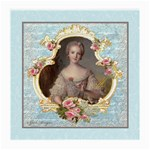 Young Marie Antoinette Portrait Glasses Cloth (Medium)