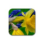 daffodils_and_hyacinth-1600x1200.jpg