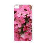 floral iphone cover - Apple iPhone 4 Case (White)