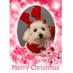 Pastel Red 5x7 Christmas card - Greeting Card 5  x 7
