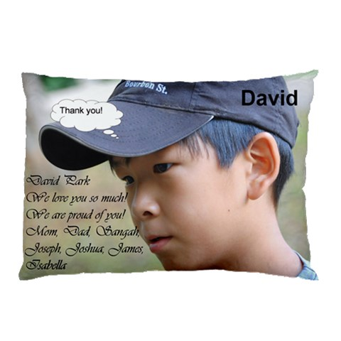 David By Kunsoon Park   Pillow Case   S0vqgw6xa06l   Www Artscow Com 26.62 x18.9 Pillow Case
