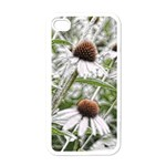 Frost Flowers Apple iPhone 4 Case (White)