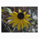 Rudbeckia Glasses Cloth (Large)