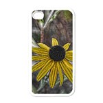 Rudbeckia Apple iPhone 4 Case (White)
