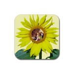Sunflower Coaster - Rubber Coaster (Square)