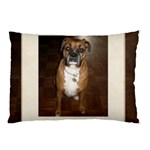 roxy pillow case